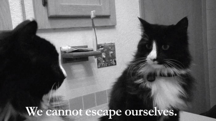 we-cannot-escape-ourselves