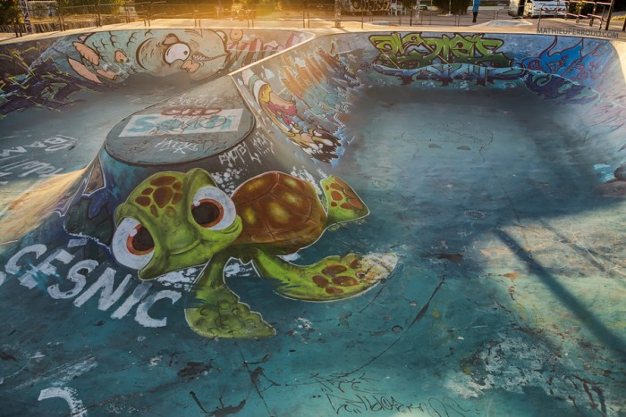surfer-dude-meets-skater-dude finding nemo turtle graffiti skatepark