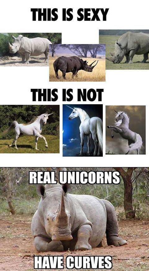 Real unicorns have curves | einhorn | nashorn