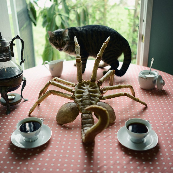 alien-facehugger-cake