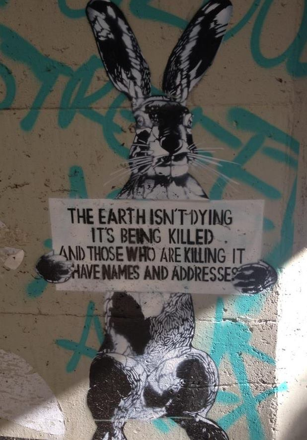 The earth isn't dying. It is being killed and those whoe are killing it have names and addresses