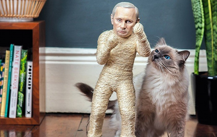 cat-scratchers-putin-header