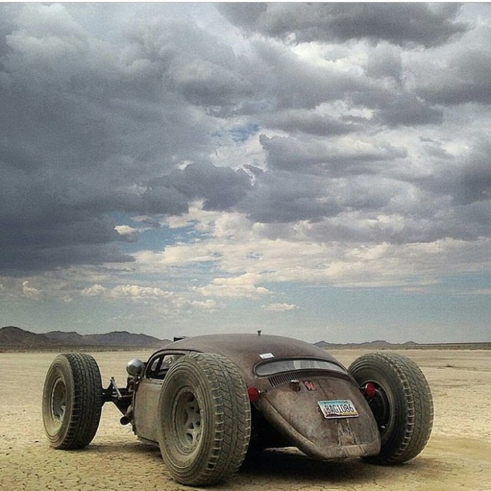 mad-max-beetle