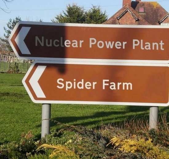 nuclear-powerplant_spider-farm what could possibly go wrong